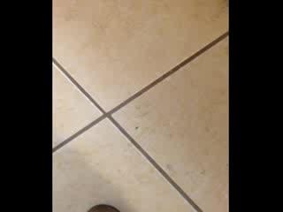 Ramada East Orange : Roach crawling on the bathroom floor