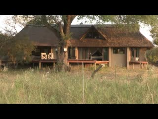 The River Lodge at Thornybush: Thornybush River Lodge