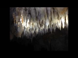 Expedition to Blancanaeux Cave from Mystic River Resort