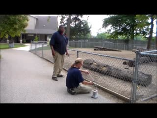 Get Connected With the Peoria Zoo Staff