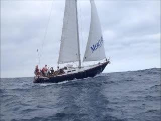 Start Sailing in Knysna