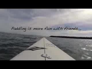 Avila Beach Paddlesports: SUPin With Avila Beach's Dolphins