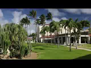 Bucuti & Tara Beach Resort Aruba: Introduction to Bucuti & Tara Beach Resorts