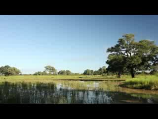 South Luangwa National Park, Sambia: Robin Pope Safaris I Luangwa Safari House