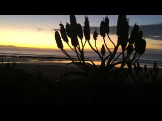 Jeffreys Bay, Afrique du Sud : Dawn at On the Beach House