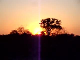 Etosha National Park, นามิเบีย: Sunset Video