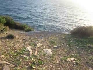 Sounio, Greece: Hellish winds cannot kill everything!