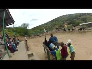 Oudtshoorn, แอฟริกาใต้: Ostrich Riding!!