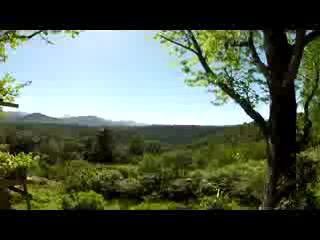 The Crags, Sydafrika: Wild Spirit Backpackers