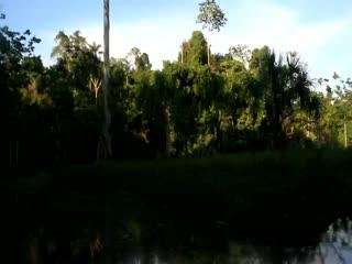 Coca, Equador: Navegacion live
