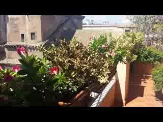 Albergo del Senato: The Balcony of Our Room