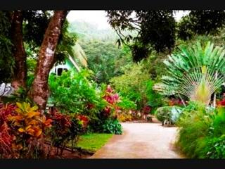 The Cottage at Coffeeriver Cottages, Marigot, Dominica