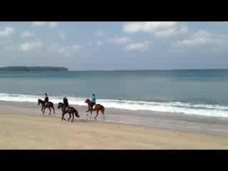 Cherngtalay, Tailandia: Beach Rides