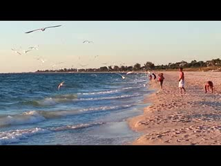 A Place to Be Motel: A Day at Nokomis Beach