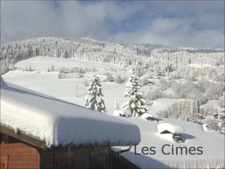 Les Cimes: Ski Chalet Megeve