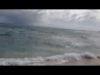 Toiny Coast: Toiny Beach. Январь 2015
