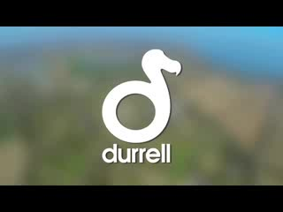 Jersey Zoo: Durrell Wildlife Conservation Park Video