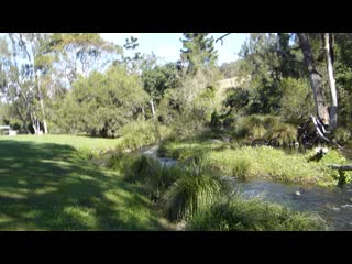 O'Reilly's Canungra Valley Vineyard Vintage Restaurant: RUNNING CREEK
