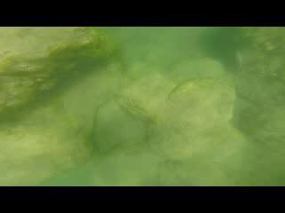 Parco Nazionale Krka : Krka waterfalls
