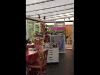 Helen Elliott Art: Helen's studio & gallery
