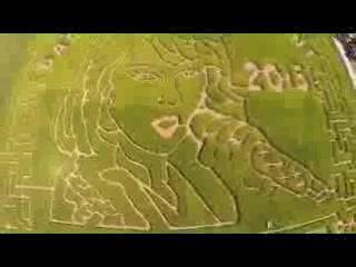 Summers Farm: 2015 Taylor-Made Corn Maze!