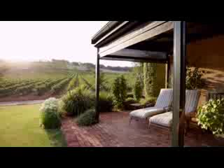 Milhinch Seize the Day Wines