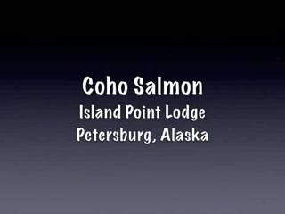 Petersburg, AK: Island Point Lodge