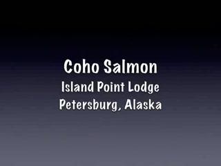 Petersburg, AK: Island Point Lodge