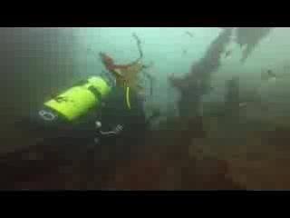 Lahinch, Ierland: Scuba Diving - Boat Trip West Coast, Ireland ENJOY!