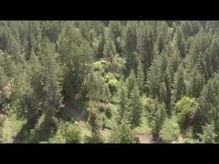 Oyama, Canada: high above the trees