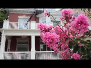 DC INNS – Woodley Park Guest House of Washington DC