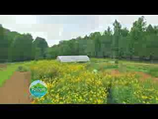 farm to table almost 3 min MASTER_YouTube_1080p
