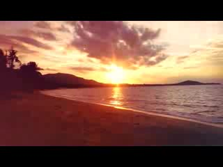 Treehouse Silent Beach : a day in the sun!!!
