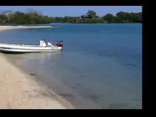 Rons Belize Shuttle Service in Placencia