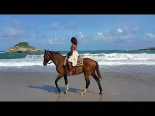 Atlantic Ss Riding Les Horse On The Beach In St Lucia
