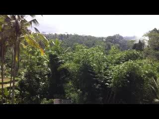 เตกัลลาลัง , อินโดนีเซีย: Gunung Kawi Sebatu Temple
