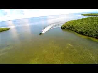 โฮโมซัสซา, ฟลอริด้า: airboats & dolphin tours to the Gulf of Mexico