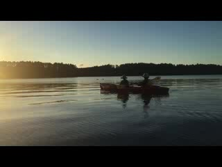 Eagle River, WI: loons