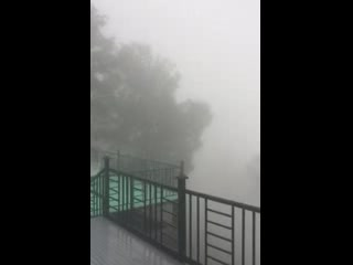 Monsoon in Kasauli