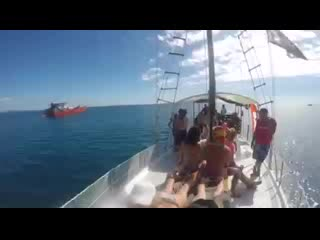 Denarau Island, ฟิจิ: Real experience on Jolly Bula Fiji
