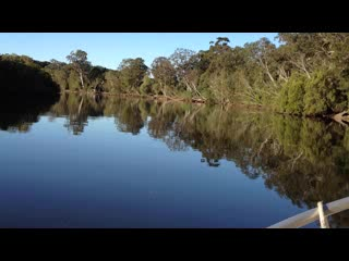 Brunswick Heads, ออสเตรเลีย: Eco Rainforest River Cruise
