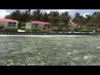 Turneffe Flats - Beach Cabanas