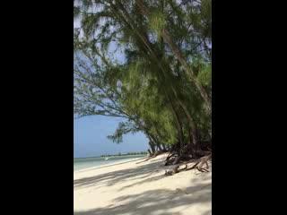 Middle Caicos: Bambara Beach 2016