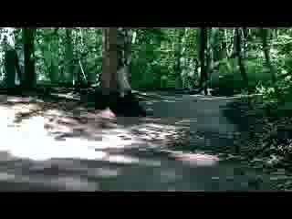 Avalon Park Reserve Stony Brook New York - A Walk Through