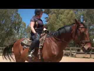 Gidgegannup, ออสเตรเลีย: Horse Trail Riding @ Zia Park, Perth, Western Australia