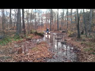 This video was taken in the Haliburton area of Ontario