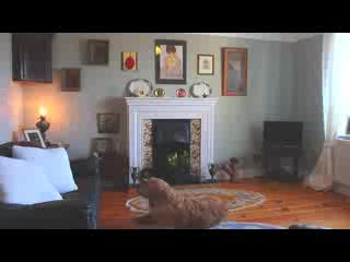 Portaferry, UK: Ballyrusley B&B