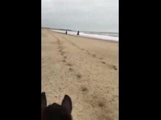 Wicklow, Ireland: Beach day at Brittas Bay