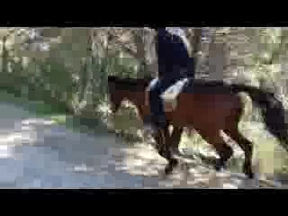 El Chorro, İspanya: Amazing riding routes with plenty of galloping