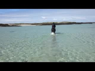 Ballyconneely, Ιρλανδία: Towards Horse Island